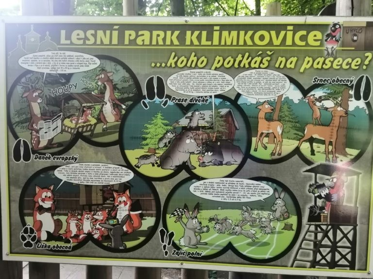Výlet do lesního parku Klimkovice – Hvězdičky
